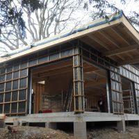 Maison bois dans les arbres à Blagnac